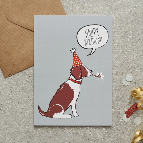 Springer Spaniel (Liver & White) Birthday Card