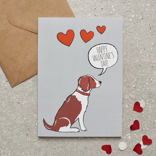 Springer Spaniel (Liver & White) Valentine's Day Card