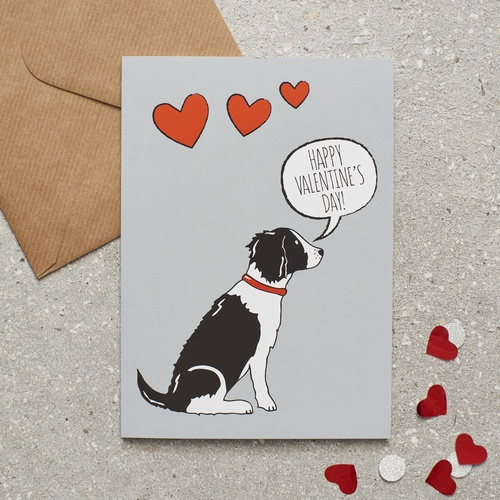 Springer Spaniel (black & white) Valentine's Day Card