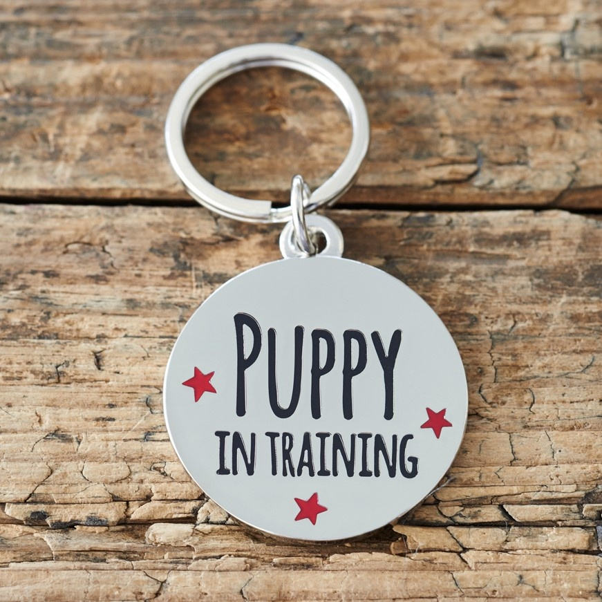"""Puppy in Training"" Puppy ID Name Tag"